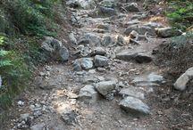 caminho portugues santiago