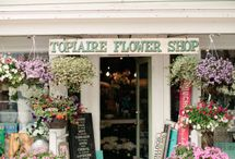 Flower Shops / by Jennifer Ciavarella
