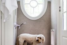Pet heaven / Design for cats and dogs