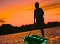 Fitness - SUP / by Ginny Lawler Veldhouse