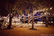Sammys wedding / by Cynthia Strawser