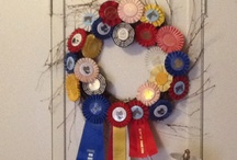 show ribbon ideas / by Kelly Story