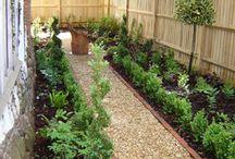 Veggie patch side garden