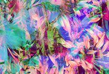 Tropical Prints