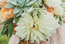Wedding Flowers / by Jenna DiPrima
