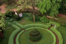 Formal Garden Beauty / by Kat White