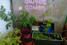 my own sweet garden