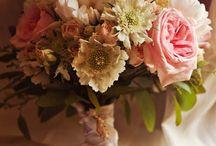 Wedding / by Megan Morfe