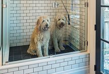 Pet Friendly Home Ideas / Who said pet-friendly homes couldn't be beautiful? This board is full of our favorite inspiration with spaces for our four-legged friends.