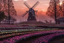 Netherlands ❤