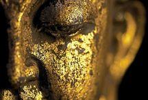 Wissen + Spiritualität