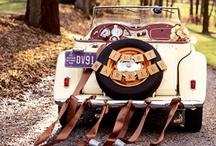 Car Wedding ideas / just some wedding car dressing ideas...