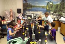 Creation Science Summer Camp at Plymouth Christian Academy