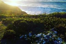 Paisagens / Random pics of beautifull views. follow me on instagram (Bio)