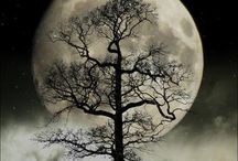 Luna ☽ moon