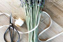 Giardinaggio / Confronta 5 preventivi gratuiti di giardinieri della tua zona e scegli il migliore https://www.preventivi.it/giardinaggio