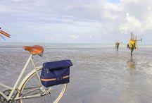 Sacs pour les cyclistes ... nouveaux, chics et pratiques