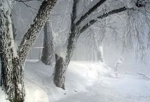 Winter and its beauties