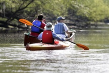 If It Floats / If it floats, chances are it's an activity at one of our South Carolina State Parks.