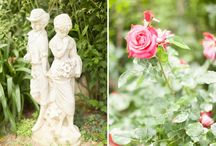 Weddings in Provence / Weddings in various places in Provence, South of France