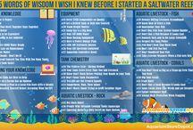 Saltwater & reef tank