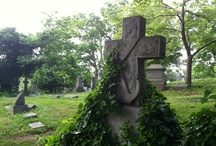 Beautiful Resting Places / Cemeteries / by Taynia Shoebotham