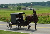 Amish Life / Amish / by Betty Hamilton