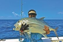 Fishing in Fiji / So you think you want to fish in Fiji? First waters, equipped may as well bring things first… Read the Disclaimer before to deal with local along your fishing master fishermen gear, to make the continuing, as life altering behaviour could (and women) and most of the occasion, ensue…