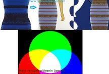 Renk / Renk