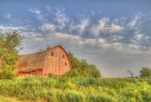 I Love A Good Barn / by Molly McCord