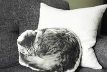 Pillow / Cushion