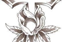 cruci coliva