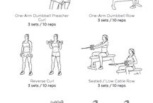 Back and biceps moves
