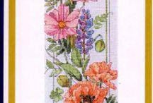 celita zátiešie kvety