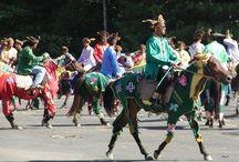 Le Bajau / Lié a un groupe ethnique de Kota Belud qui sont des éleveurs et des cavaliers passionnés, le Bajau est une race élevée dans l'État de Sabah en Malaisie. Il s'agit d'un poney léger et fin qui a toujours le type d'Asie du sud est. Richement orné lors des défilés des cavaliers, le Bajau est un bon cheval de travail qui est très apprécié localement.