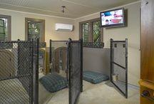 Doghouse inside