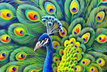 Peacock painting - great colors Fine Art Americ