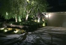 Moonlighting / Dramatic landscape lighting effects that create  subtle ambient out illumination