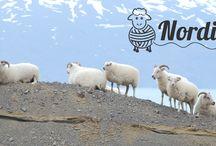 Uskova blog I Nordisk Garn