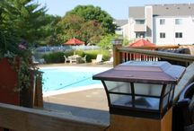 Chatham Hills Apartments-Fun at the Pool-A Nolan RED Community