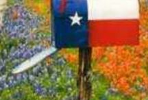 Texas Sweet Texas / Things related to the great state of Texas and its culture. The state of my mother's birth and several generations of our ancestors. / by Jamie Miller