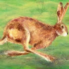Joanne Wishart - Wildlife Prints / www.joannewishart.co.uk