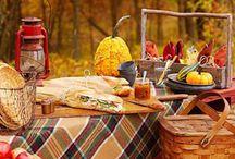 Autunno in campagna / I campi profumano di brina, le foglie cadono su un manto ramato, la natura offre dolce primizie... L'Autunno in campagna ha un sapore genuino tutto da assaporare.