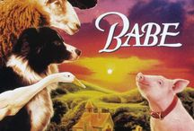Babe / by StateTheatre NJ