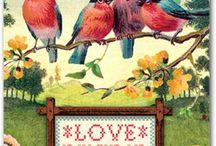 kuşlar ve kelebekler