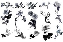 ink / by Anna Applegate