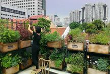 rooftops ideas