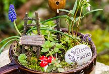 Pixie-Perfect Plantings to Enchant & Delight