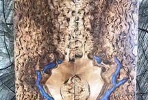 Masur Birch