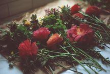 floral / by Bridget S